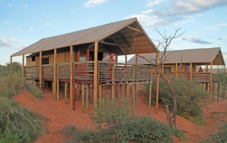 Suricate Tented Lodge